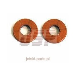 Crankshaft seal kit Sea-Doo 950 / 951 DI 622203