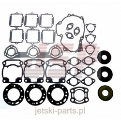Complete gasket kit with seals Polaris 611801