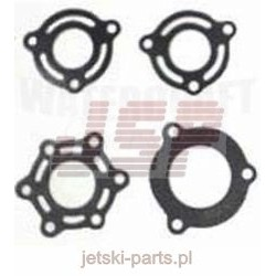 Exhaust gasket kit TigerShark 640 641501