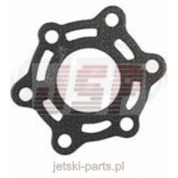 Exhaust gasket TigerShark 640 3008-385