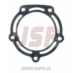 Exhaust gasket TigerShark 900 0612-461